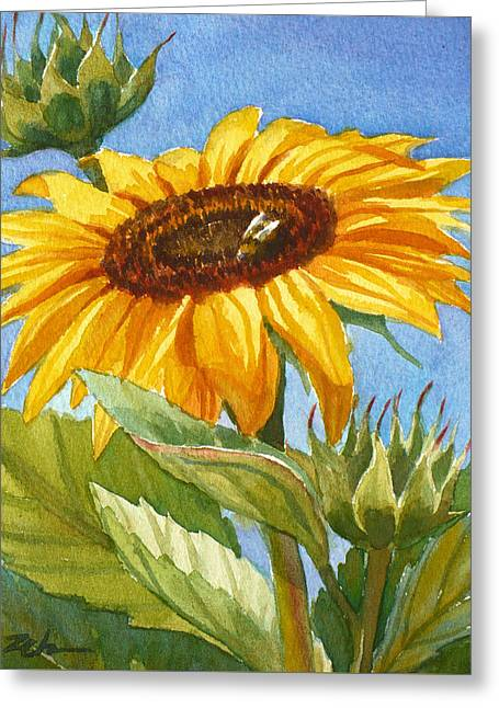 Sunflower And Honey Bee Greeting Card