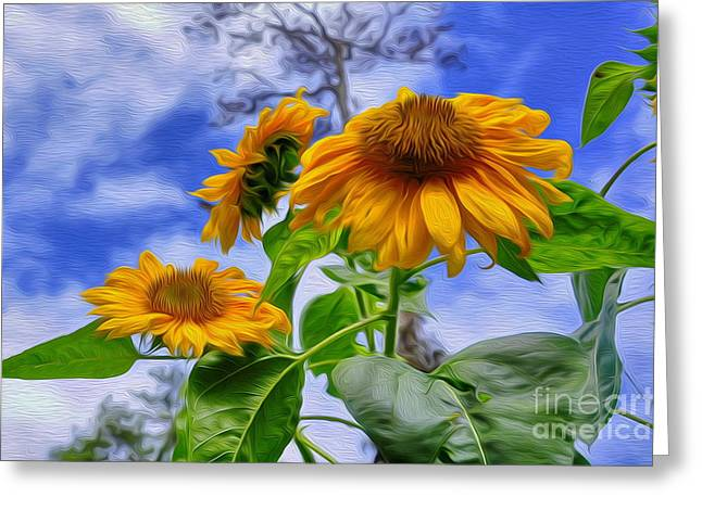 Sunflower Art Greeting Card by George Paris