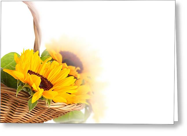 Sunflower Beautiful Greeting Card by Boon Mee