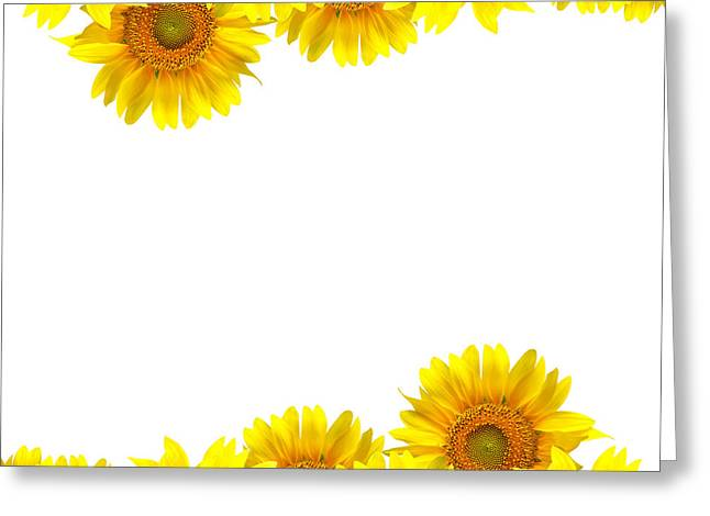 Sunflower Greeting Card by Boon Mee