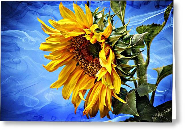Greeting Card featuring the photograph Sunflower Fantasy by Barbara Chichester