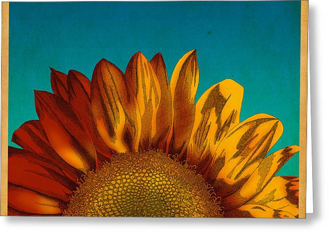Greeting Card featuring the drawing Sunflower by Meg Shearer