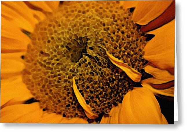 Greeting Card featuring the photograph Sunflower Painting by Ellen Tully