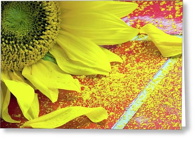 Sunflower Pollen (helianthus Annuus) Greeting Card