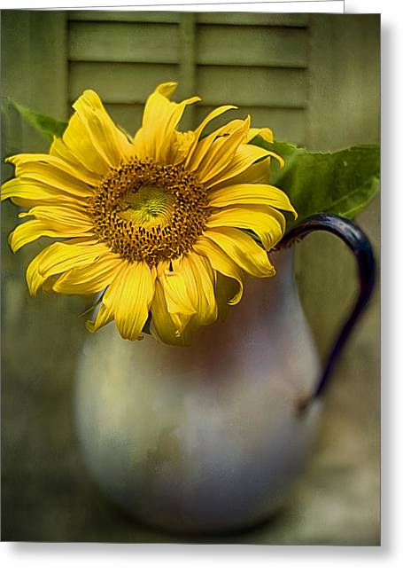 Sunflower Series I Greeting Card by Kathy Jennings