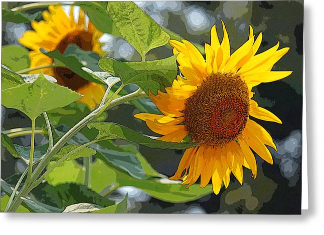 Sunflower Series II - Enhanced Greeting Card by Suzanne Gaff