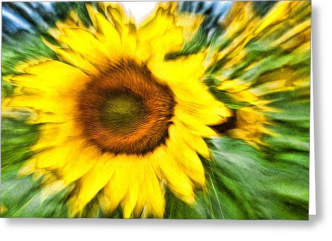 Sunflower Study 4 Greeting Card by Mitchell Brown