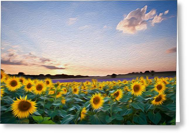 Sunflower Summer Sunset Landscape With Blue Skies Digital Painting Greeting Card