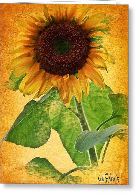 Sunny Sunflower Wall Art Greeting Card