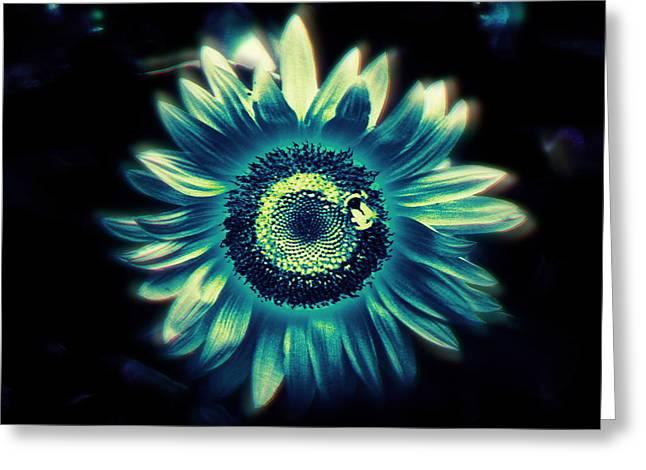 Sunflower Sutra Greeting Card by Li   van Saathoff