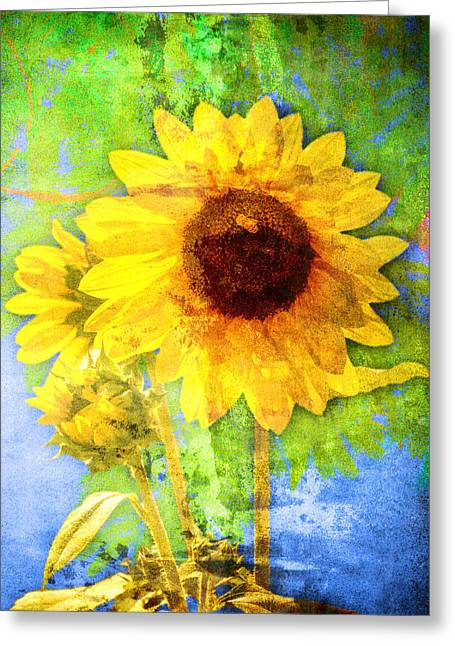 Greeting Card featuring the photograph Sunflower With Bee Number Fourteen by Bob Coates