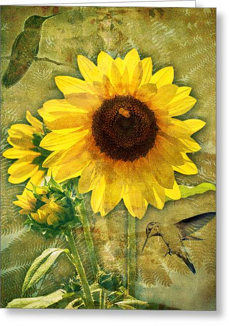 Greeting Card featuring the photograph Sunflower With Bee Number Nineteen by Bob Coates