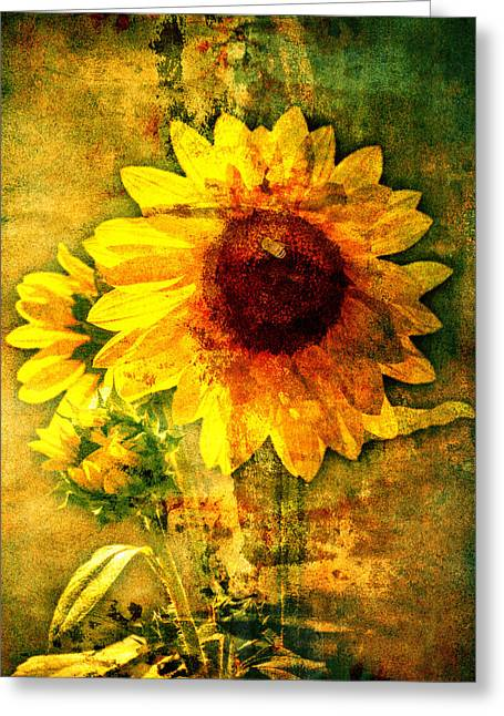 Greeting Card featuring the photograph Sunflower With Bee Number Ten  by Bob Coates