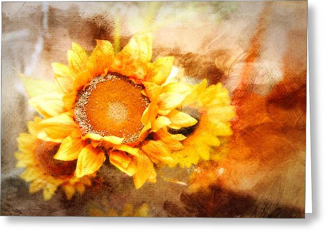 Sunflowers Aglow Greeting Card by Mary Timman