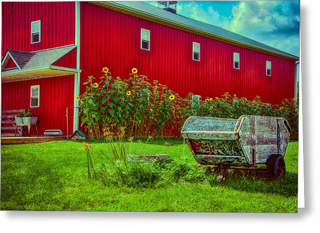 Sunflowers Beside A Big Red Barn Greeting Card