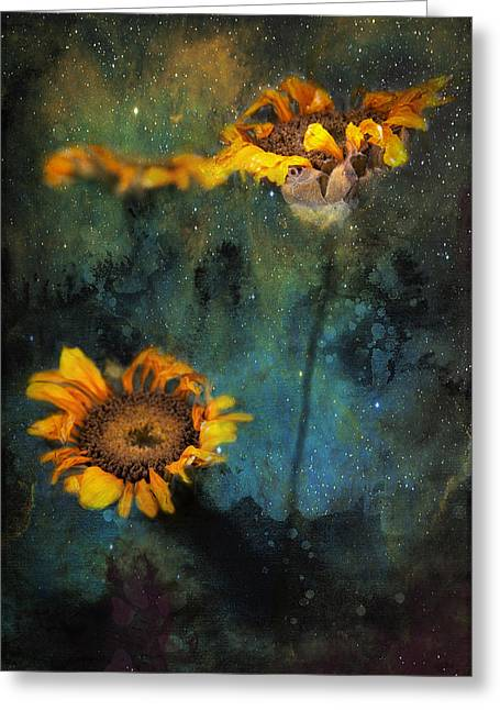 Sunflowers In Night Sky Greeting Card
