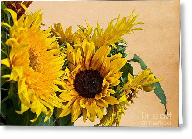 Sunflowers On Old Paper Background Art Prints Greeting Card by Valerie Garner