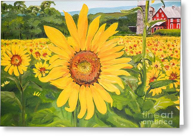 Sunflowers - Red Barn - Pennsylvania Greeting Card
