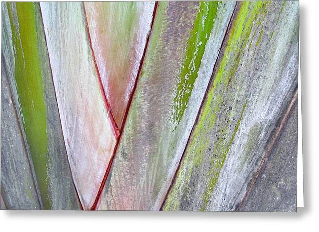 Sunken Gardens Abstract 4 Greeting Card by Maria Huntley
