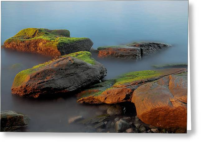 Sunkissed Rocks Greeting Card by Jacqui Boonstra