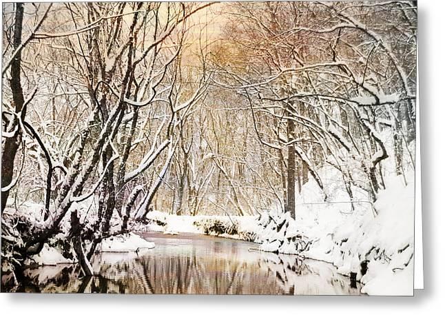 Sunkissed Winter Creek Greeting Card by Jai Johnson