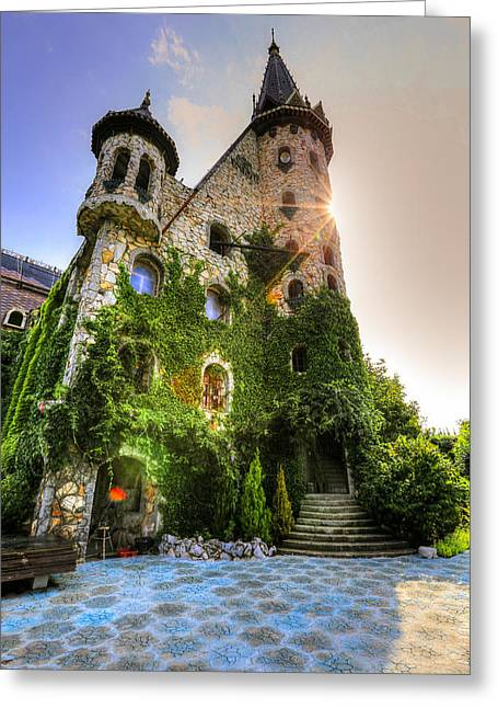 Sunlight Castle Greeting Card by Eti Reid