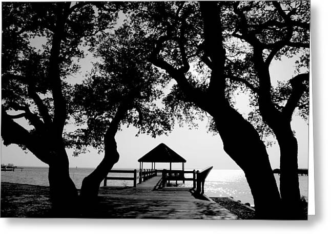 Sunlight On Currituck Sound Greeting Card