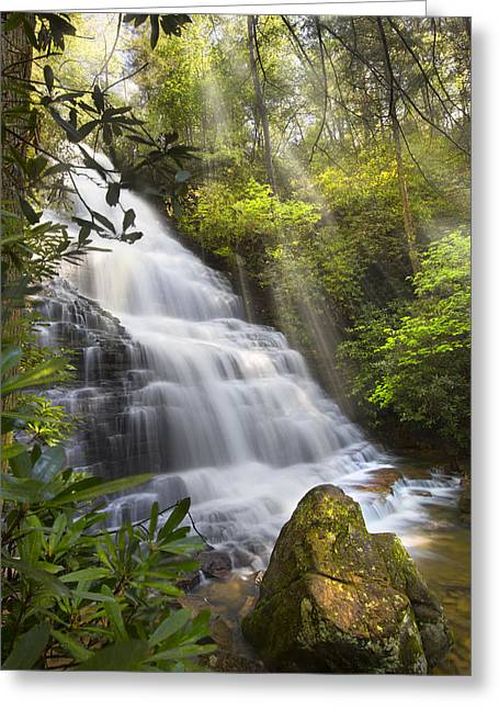 Sunlight On The Falls Greeting Card by Debra and Dave Vanderlaan