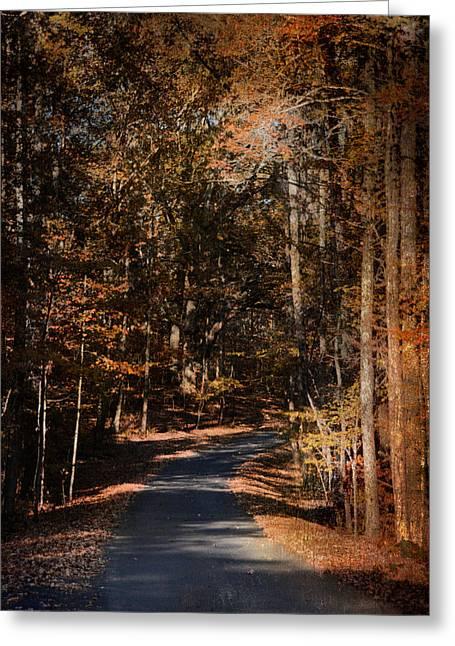 Sunlit Autumn Path Greeting Card by Jai Johnson