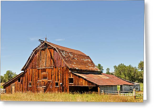 Greeting Card featuring the photograph Sunlit Barn by Sue Smith