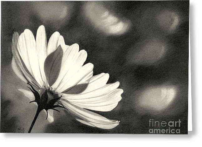 Sunlit Daisy Greeting Card by Nicola Butt