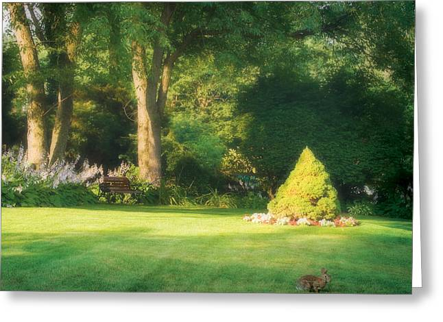 Sunlit Greens Greeting Card