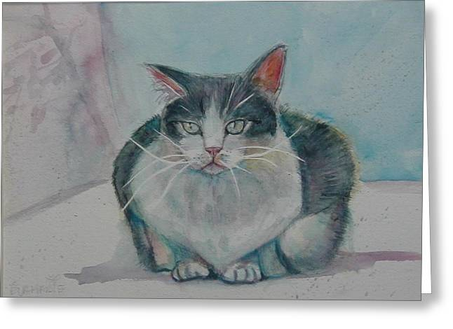 Sunning Thomas Greeting Card by Eva Marie Tanner-Klaas