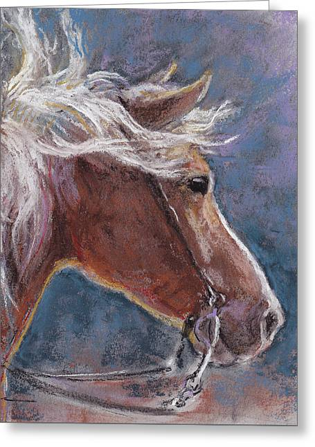 Sunny Haflinger Greeting Card by Tracie Thompson