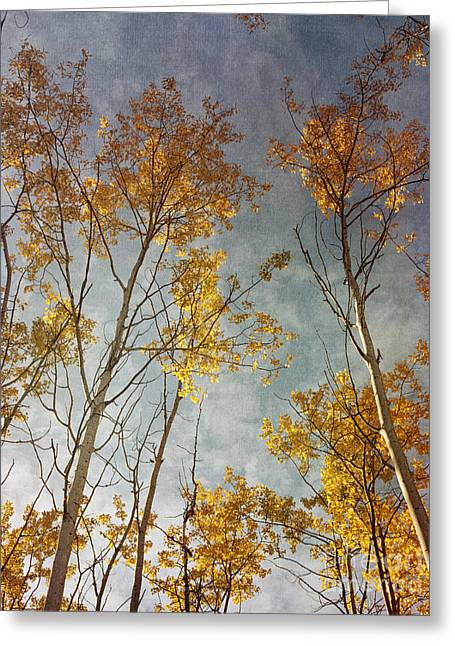 Sunny Leaves Tall Greeting Card