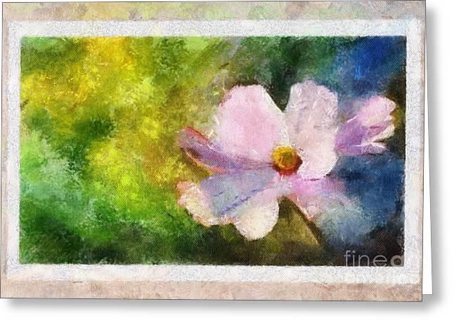 Sunny Pink Cosmos Greeting Card
