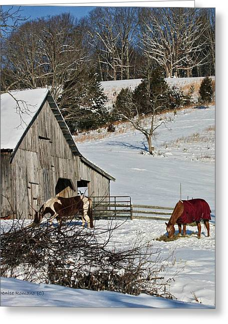 Sunny Snow Day Greeting Card by Denise Romano