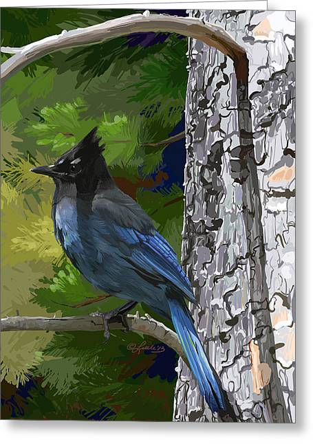 Sunny Stellers Jay Greeting Card