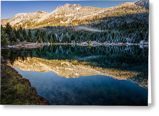 Sunny Tops And Icy Skirts At Gold Creek Pond Greeting Card by Brian Xavier