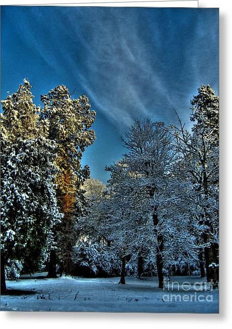 Sunny Winter Day Greeting Card by Nina Ficur Feenan