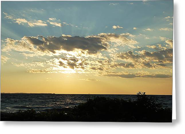 Sunrays Greeting Card by Aimee L Maher Photography and Art Visit ALMGallerydotcom
