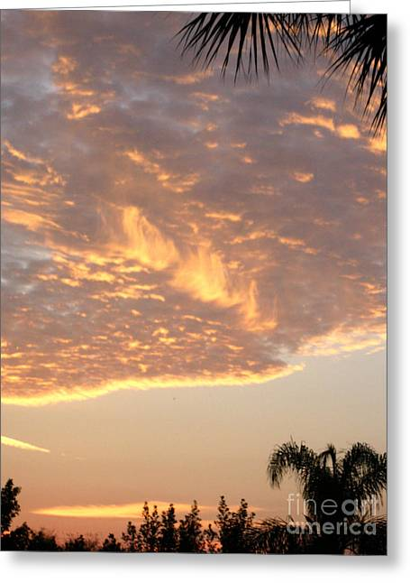 Sunrise 54. Florida Usa Greeting Card by Oksana Semenchenko