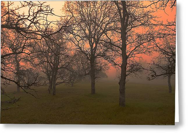 Fog And Sunrise 2 Greeting Card