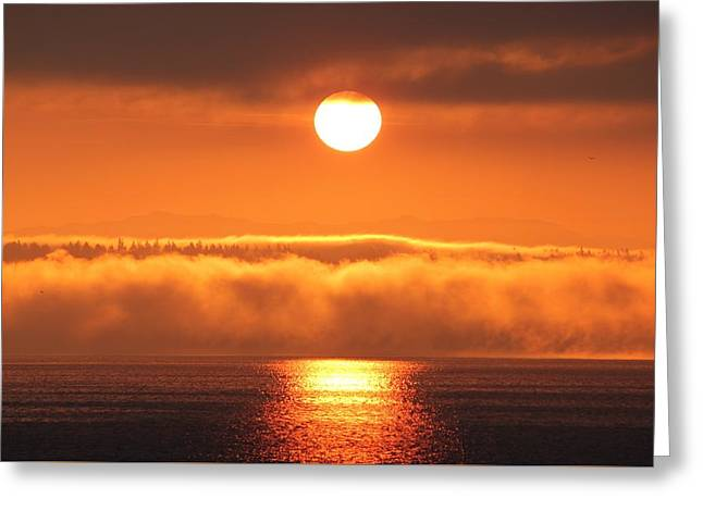 Greeting Card featuring the photograph Sunrise And Fog by E Faithe Lester