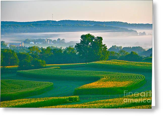 Sunrise And Morning Fog Greeting Card by Joan McArthur