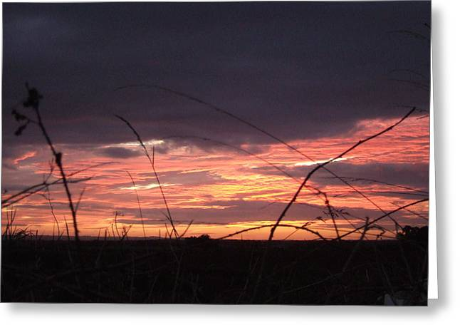 Greeting Card featuring the photograph Sunrise At Boroughbridge by Martin Blakeley