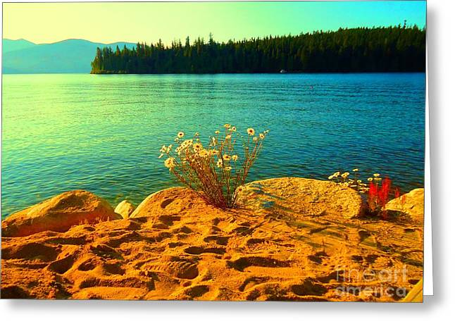 Sunrise At Daisy Lake Greeting Card