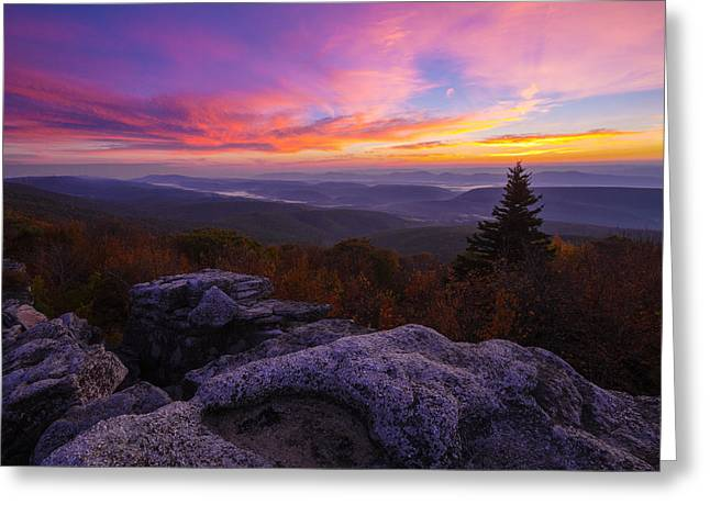 Sunrise At Dolly Sods In West Virginia Greeting Card