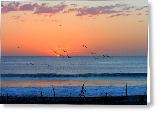 Sunrise At Indialantic Greeting Card by Kay Gilley