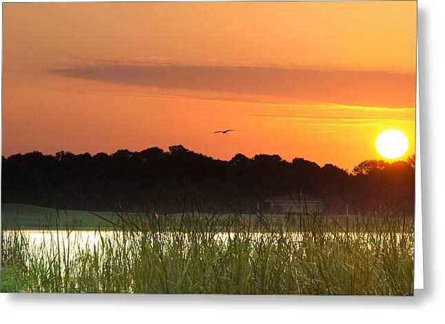 Sunrise At Lakewood Ranch Florida Greeting Card